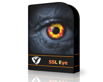 SSL Eye Protects You From Pris...